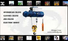 Double speed electric hoist for sale China