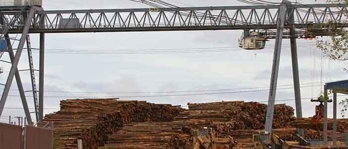 Industrial crane: Log crane for log handing | log crane for wood processing industries – Dongqi log crane