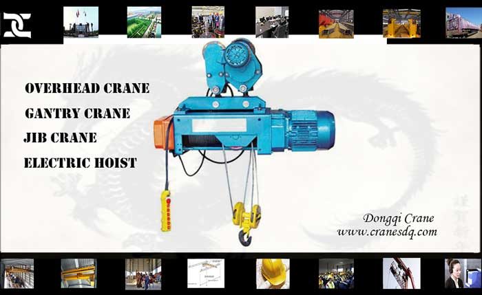 Rope eletric hoist for sale