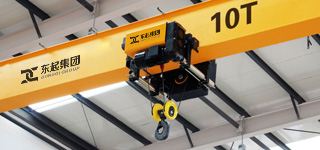 FEM standard electric hoist
